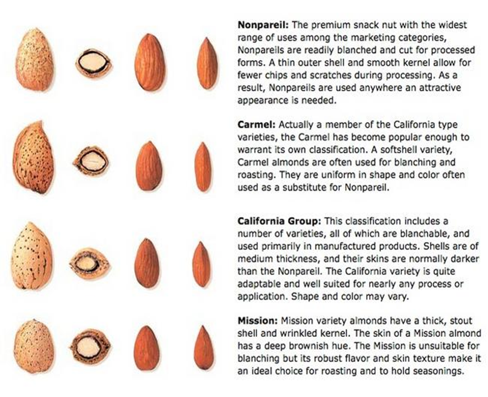 ASIA LP Almond Varieties