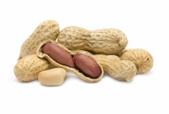 ASIA LP Peanuts